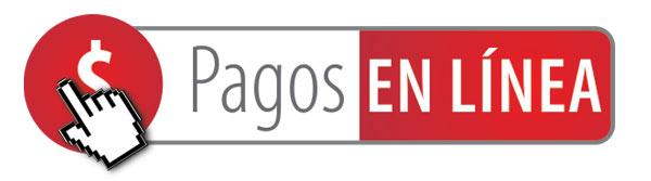 PAGOS-EN-LINEA-